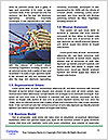 0000093822 Word Template - Page 4
