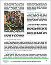 0000093823 Word Template - Page 4