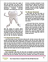 0000093831 Word Templates - Page 4