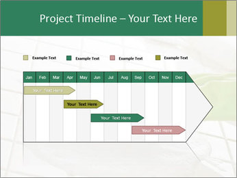 Cleaning PowerPoint Templates - Slide 25