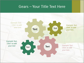 Cleaning PowerPoint Templates - Slide 47