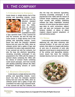0000093837 Word Template - Page 3