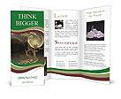 0000093842 Brochure Templates