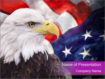 Bald eagle PowerPoint Templates - Slide 1