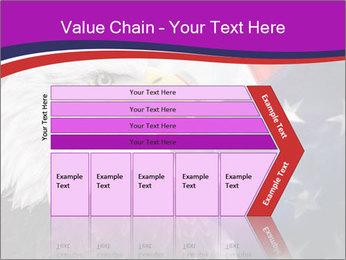 Bald eagle PowerPoint Templates - Slide 27