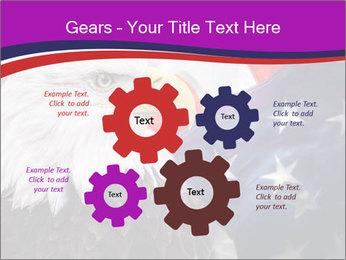Bald eagle PowerPoint Templates - Slide 47