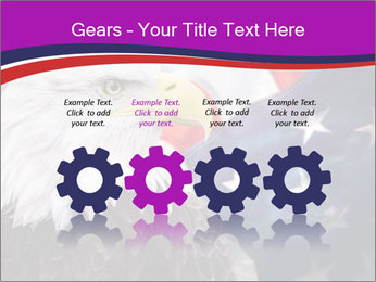 Bald eagle PowerPoint Templates - Slide 48