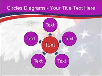 Bald eagle PowerPoint Templates - Slide 78