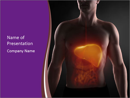 Focused on man liver PowerPoint Template