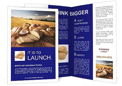0000093848 Brochure Templates