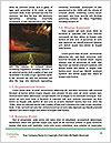 0000093850 Word Templates - Page 4