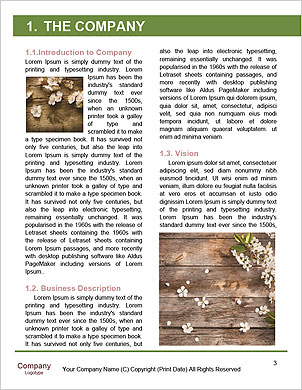 0000093851 Word Template - Page 3