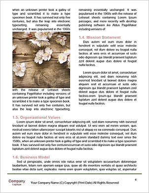 0000093851 Word Template - Page 4