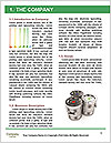0000093860 Word Template - Page 3