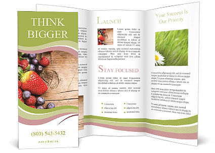 0000093870 Brochure Templates