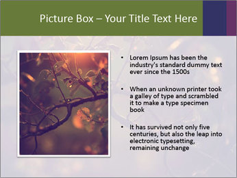 Vintage photo PowerPoint Template - Slide 13