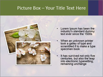 Vintage photo PowerPoint Template - Slide 20