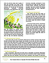 0000093873 Word Template - Page 4