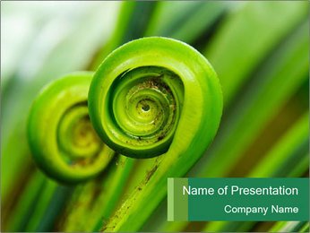 The green fern origin PowerPoint Templates - Slide 1