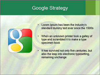 The green fern origin PowerPoint Templates - Slide 10
