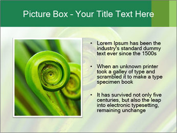 The green fern origin PowerPoint Templates - Slide 13