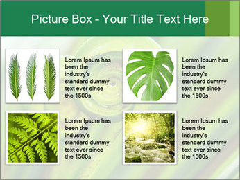 The green fern origin PowerPoint Templates - Slide 14