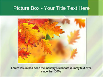 The green fern origin PowerPoint Templates - Slide 15
