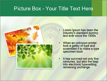The green fern origin PowerPoint Templates - Slide 20