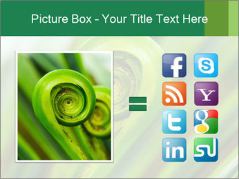 The green fern origin PowerPoint Templates - Slide 21