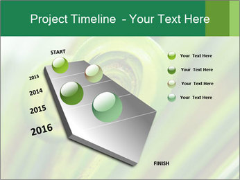 The green fern origin PowerPoint Templates - Slide 26