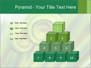 The green fern origin PowerPoint Templates - Slide 31