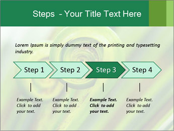 The green fern origin PowerPoint Templates - Slide 4