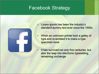 The green fern origin PowerPoint Templates - Slide 6