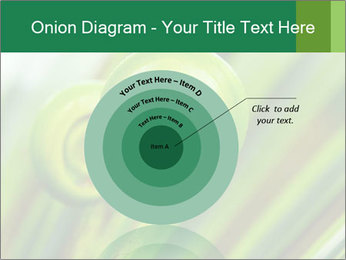 The green fern origin PowerPoint Templates - Slide 61