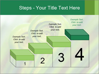 The green fern origin PowerPoint Templates - Slide 64