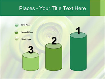 The green fern origin PowerPoint Templates - Slide 65