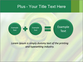The green fern origin PowerPoint Templates - Slide 75