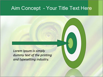 The green fern origin PowerPoint Templates - Slide 83