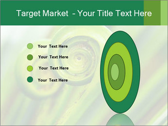 The green fern origin PowerPoint Templates - Slide 84