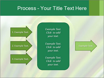 The green fern origin PowerPoint Templates - Slide 85