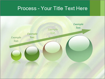 The green fern origin PowerPoint Templates - Slide 87
