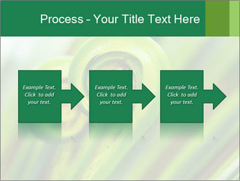 The green fern origin PowerPoint Templates - Slide 88