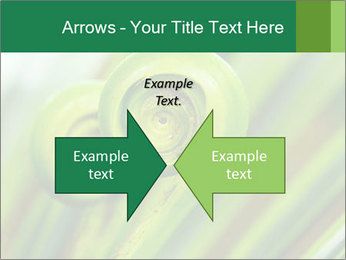 The green fern origin PowerPoint Templates - Slide 90