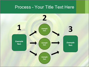 The green fern origin PowerPoint Templates - Slide 92