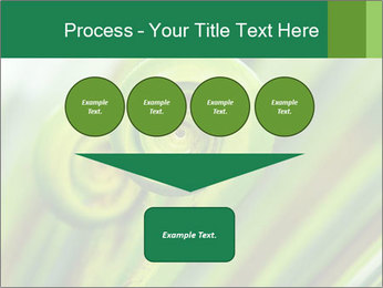 The green fern origin PowerPoint Templates - Slide 93