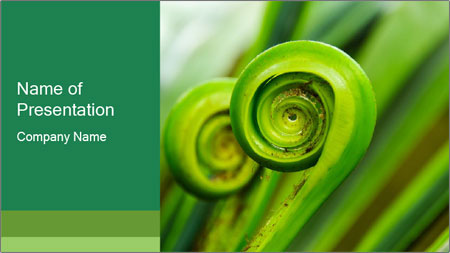 The green fern origin PowerPoint Template