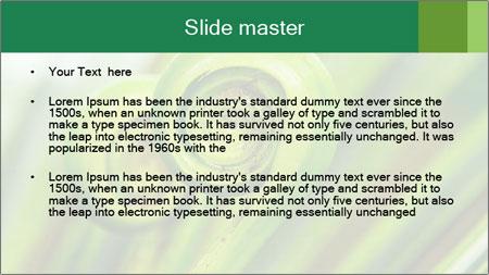 The green fern origin PowerPoint Template - Slide 2