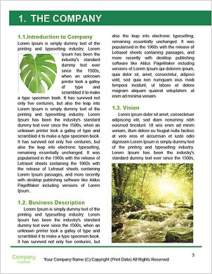 0000093883 Word Template - Page 3