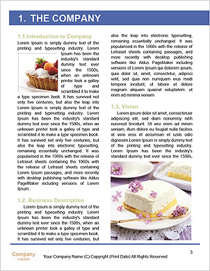 0000093886 Word Template - Page 3