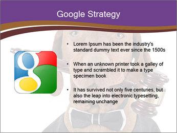 Golden color pure breed vizsla dog PowerPoint Template - Slide 10